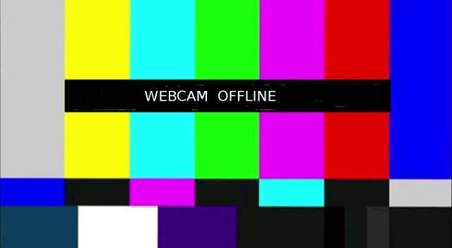 Nistkasten Webcam5